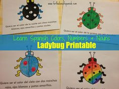 FREE ladybug printable: How to use colors to describe nouns in Spanish