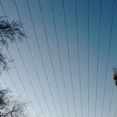 #vsco #vscomoscow #vscorussia #vscocam #color #sky #mobilephotography
