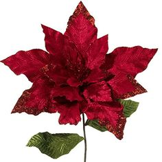 "22"" Poinsettia (With 35"" Stem) http://www.amazon.com/dp/B00MN55B86/ref=cm_sw_r_pi_dp_7i3swb0DRJKNC"