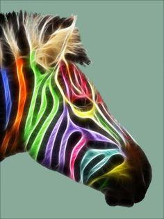 Inspiration. Colored Zebra. EDS.