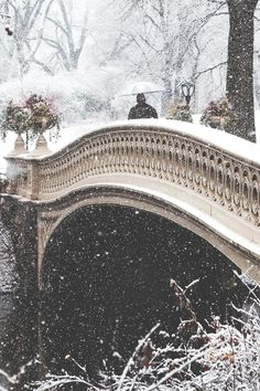 Beautiful bridge in the snow!!! Bebe'!!! Love to take a stroll in the snow!!!