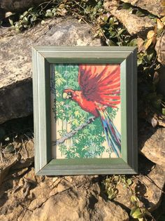 This is a stunning tropical picture of a red parrot ( macaw ). Frame is a vintage green art deco design, ( wood frame). Both picture & frame in very good vintage condition, only small wear to frame. Adds to character of the piece! Great for beach, cottage, tropical decor homes. Vibrant colors of red , green, & blue! Back has eye hooks & wire for hanging. Made by Reliance Industries, Inc., style no. 730. Measures 10.5  X 8.5   Thanks for shopping YellowHouseDecor!  Please visit my sisters…