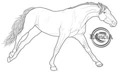 Free Horse Lineart 3 by Eduscia.deviantart.com on @deviantART Horse Pencil Drawing, Pencil Drawings Of Animals, Horse Drawings, Art Drawings, Horse Stencil, Warmblood Horses, Horse Sketch, Horse Coloring Pages, Free Horses