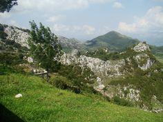 En Asturias se disfruta la diversidad de paisajes con todos los sentidos - Diario de Turismo