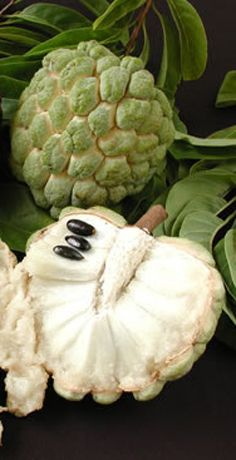 Custard apple or soursop ... So delicious ! Can't buy in the states.