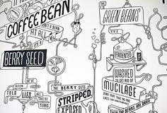 Tane - Shaky Isles Coffee Company, Interior illustrations Creative Walls, Creative Design, Corner Drawing, Office Wall Graphics, Coffee Shop, Coffee Bars, Coffee Company, V60 Coffee, Doodle Wall