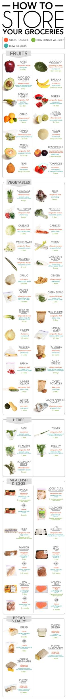How To Store Your Groceries ? Where to store, how to wrap, and how long all kinds of food will keep (Infographic)