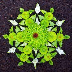 Mum, bells of Ireland, snap dragon #danmala #kathyklein #green #DSCOLOR #dsshapes #beautiful_mandalas #earthart #naturemandala #natureart #mandalas #mandala #flowerart #flowers #flowermandala #design