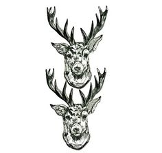 DARCY & DELI the DEER temporary tattoos pack  hand by InkyAndBear