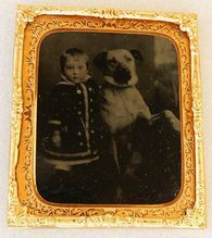 Antique Tintype Girl With Posing Dog