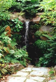 exotical garden - Recherche Google