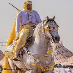 Looks majestic! Yellow is my favourite color! Majestic Horse, Beautiful Horses, Majestic Animals, Beautiful People, Arabian Costume, Horse Costumes, All About Horses, Horse World, Horse Breeds