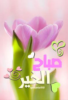 Good Morning Arabic, Good Morning Photos, Good Morning Good Night, Morning Wish, Good Night Messages, Morning Messages, Morning Greeting, Morning Texts, Morning Quotes