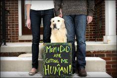 Baby Announcement Ideas #dog