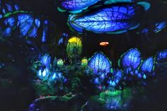Top Six Things You Must Do at Pandora: World of Avatar - Living By Disney Avatar Disney World, Anime Places, New Pandora, Alien Creatures, Tribal Fashion, Plan Your Trip, Fun Drinks, Looking Gorgeous, Cool Designs