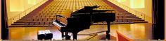 Steve Bradford pianist