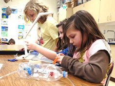 Twenty Ideas for Engaging Projects.  (21st Century - PBL)