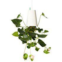 Boskke Sky Planter Recycled Medium, weiß