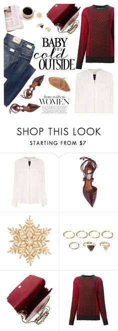 """""""It's cold outside"""" by scelestum ❤ liked on Polyvore featuring Derek Lam, Steve Madden, Susan Caplan Vintage, Forever 21, T By Alexander Wang and Replay"""