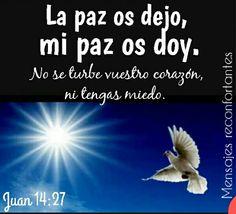 25 Os he dicho estas cosas estando con vosotros.   26 Mas el Consolador, el Espíritu Santo, a quien el Padre enviará en mi nombre, él os enseñará todas las cosas, y os recordará todo lo que yo os he dicho.  27 La paz os dejo, mi paz os doy; yo no os la doy como el mundo la da. No se turbe vuestro corazón, ni tenga miedo. Juan 14:25-27 Sólo tú Jesús das Paz a mi vida, nada ni nadie podrá alejarme de tu paz.