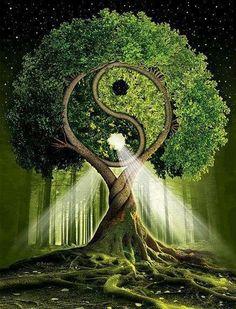 Serenità è quando ciò che dici, ciò che pensi, ciò che fai, sono in perfetta armonia. <3  (Mahatma Gandhi)