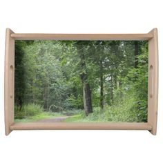 Lush Green Forest Food Tray
