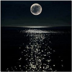 Swimming at night is one of the most beautiful things. Especially when you see the moon from under the water.