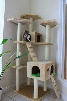 BestPet Cat Tree Tower Condo Multi-Level Kitten Plush Indoor Cat Playground with Toy and Scratching Cat Trees Cheap, Diy Jouet Pour Chat, Cat Castle, Cat Gym, Cat Tree House, Diy Cat Tree, Cat Activity, Cat Towers, Cat Playground