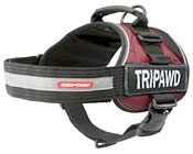 Tripawd Amputee Dog Support Harness