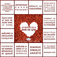 eliminate cholesterol plaque buildup in your arteries - Les bienfaits et vertus de la baie de Goji Sports Nutrition, Nutrition Education, Diet And Nutrition, Health Diet, Goji, Acide Aminé, Detox Tips, Juice Plus, Lower Cholesterol