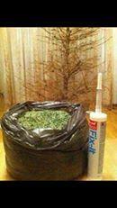 een doe-het- zelf-kerstboom bouwpakket