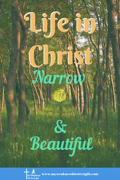 Life as a Chrisitan is not always easy, we all suffer. And Christ said the way was narrow, are we willing to stay on the narrow path of A Life in Christ Christian Living, Christian Faith, Christian Quotes, Bible Encouragement, Christian Encouragement, Book Launch, Christian Parenting, Before Us, Christian Inspiration