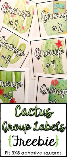 Groups 1 - 8 labels with a cactus theme. Labels can fit Dollar Spot Adhesive pockets. Cute cactus labels to match your classroom theme. New Classroom, 5th Grade Classroom, Classroom Freebies, Classroom Themes, Classroom Organization, Classroom Management, Classroom Walls, Classroom Design, Classroom Displays