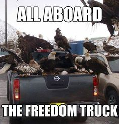 This is the freedom truck! #carmeme #MERICA