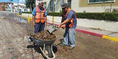 Gobierno vallartense se prepara para recibir a los turistas con una ciudad limpia