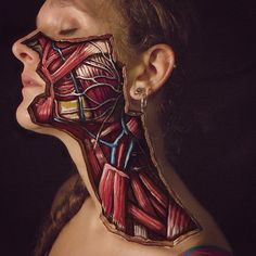 """""""A #dissection depicting the 5 branches of the #facial #nerve painted by #dannyquirkartwork"""""""