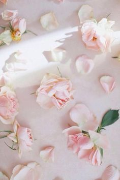 #delicate #flowers #beautiful