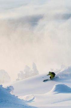 winter wonderland - ski