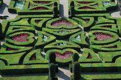 Tender love garden at Château de Villandry. France