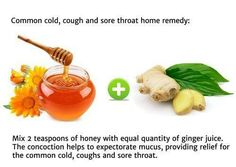 COMMON COLD AND SORE THROAT REMEDY