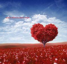 Happy Anniversary Blank Card Husband Wife - Red Tree of Love Card plus Freepost Daniel E Samuel, When Youre Feeling Down, Valentines Day Background, Heart Tree, Red Tree, Wedding Anniversary Cards, Happy Anniversary Quotes, Anniversary Greetings, Hurt Feelings