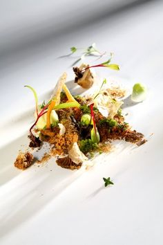 El bosque animado by Chef Quique Dacosta