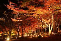 日本なのに、ここは異国か? 目を疑うほど「外国な風景」9選 - ページ 9 / 9 - ジモトのココロ(ジモココ)
