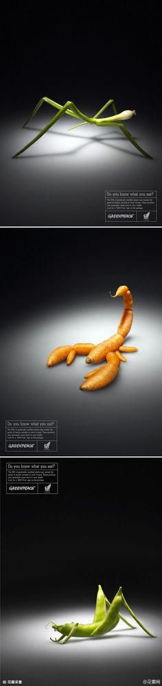 Insect carrot onion vegetable: Greenpeace: Do you know what you eat? Food Graphic Design, Graphisches Design, Graphic Design Typography, Creative Design, Creative Advertising, Advertising Design, Photoshop, Photomontage, Plakat Design