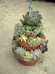 Tiered succulent garden - I love love love this idea!!