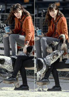 dakotadornan:  Dakota Johnson spotted with a friend and Zeppelin in New York on April 02, 2015