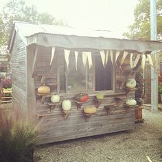 this is my biggest dream in life.having a pumpkin stand.hahaha or veggies Allotment Shed, Allotment Gardening, Pumpkin Farm, Farm Stand, Potting Sheds, Autumn Garden, Farm Gardens, Farm Life, Garden Inspiration