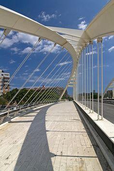 Bach de Roda Bridge  Barcelona, Spain  Santiago Calatrava