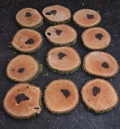 Logs slices for cake stands table decorations etc For Sale in Long Eaton, Notts