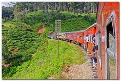 Nuwara Eliya - Ella train, Sri Lanka (www.secretlanka.com)